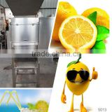 fresh fruits grape juice extractor commercial juicers for sale