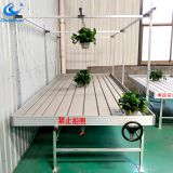 Ebb and flow greenhouse metal rolling bench for growing plants