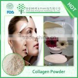 Anti-aging low molecular weight pure marine 100% fish collagen powder                                                                         Quality Choice
