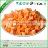 FD carrot dice freeze dried carrot