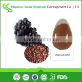 Grape Seed Extract with Polyphenols 40%
