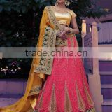 Conscientious Hot Pink Net Lehenga Choli/fancy lehenga choli/Lehenga Choli Wholesaler In India