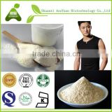 Gold Standard 100% Whey Protein concentrate Powder 80% hot sale