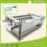Commercial Turnip Fruit Vegetable Washing and Peeling Potato Ginger Washer and Peeler Machine