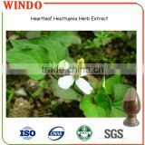 Heartleaf houttuynia herb P.E./Heartleaf Houttuynia Herb Extract