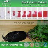Black Carrot Powder Extract, Black Carrot Color, Black Carrot Pigment