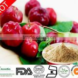 Bulk Supply Acerola Cherry Fruit Extract Powder/Acerola Cherry P.E 17%,25% 98% Vitamin C