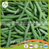 Vegetables New Season Frozen Whole and Cut Green Beans