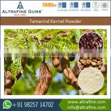 Accurate Chemical Composition Deoiled Tamarind Kernel Powder for Ketchups and Ice Creams Making
