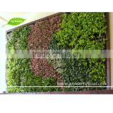 GNW GLW039 Vertical Wall Garden Planter Home Decoration Artificial Plant