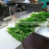 Low Price Automatic Electric Large Type Hobbing Leafy Vegetable Cutter Machine Cabbage Parsley Lettuce Celery Cutting Machine