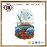 photo snow globe plastic