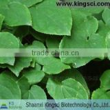 Yin yang huo, epimedium leaf extract, herba epimedii extract for improving sexual funtion
