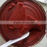 organic tomato paste bulk salsa tomato paste making machine