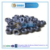 Factory Direct Supply Molybdenum Nut, Moly Nut