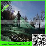 50g/sm clear olive harvesting net,plastic falling fruits protection net,olive catching mesh with reinforced grommets