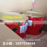 Fresh canned tomato paste 28%-30% from Xinjiang double concentration favorable price pure taste