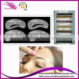 eyebrow extension stencil with 4pcs in.