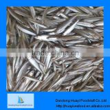 New coming price of pond smelt