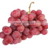 Sweet and high quality Grapes
