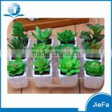 indoor artificial succulent with pot for home decorations