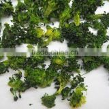 Dehydrated broccoli with florets/slices