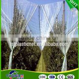 professional factory cheap price apple tree anti hail net