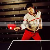 Factory Indoor 18mm MDF board 40*40 metal frame single fold ping pong table,table tennis table