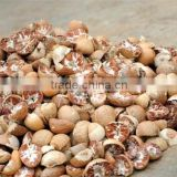 VIETNAM SPLIT BETEL NUT/ SLICE BETEL NUT FOR SALES / WHOLE NUT CROP 2015