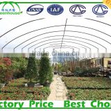 Multi Span Vegetable Commercial Greenhouse Covered By Polythene Film