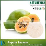 China Supplier Best Selling High Quality Help Digestion Products Nematolyt , Immobilized Papain , Papain