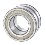WSBC Sealed double row full complement cylindrical roller bearings SL04 5017 PP