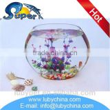 High quality curved glass aquarium for table decoration