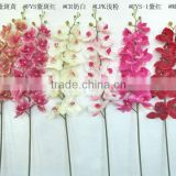artificial orchid latex long stem YL604
