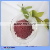 Made in China acai berry capsules for weight loss nutritional supplement