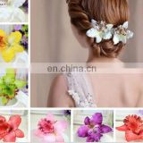Wholesale moth orchid hair clip,colorful flower chiffon fabric hairpin,holiday hair accessory clip