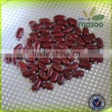 200-220 pcs/100g Chinese Dark Red Kidney Bean Prices