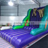 2015 Velcro wall inflatable