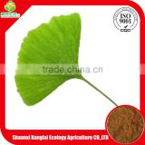 Chinese Supplier Ginkgo Biloba/Ginkgo Biloba Flavone Extract Powder Best for Anti-Cancer