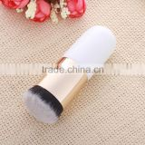 beauty needs fashionable private label cheap travel wholesale makeup brush kit free sample