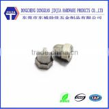 Stainless steel self locking hexagon domed cap nuts