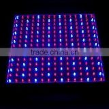 14w led grow light red blue 14W 225 LED Blue + Red Spectrum Hydroponic Plant Grow Light Panel