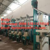 30TPD grinder machine maize meal industrial maize grinding machine maize plant processing