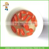 Health Food Dried Fruit Organic Certified Chinese Goji Berry