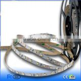 3528 flexible led strip(60led/m)