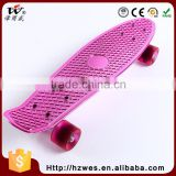 Top OEM PU Wheels Aluminum Base ABS Fish Shape Skateboard