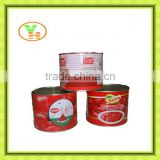 tomato paste processing plant, gino tomato paste, aseptic tomato paste, bulk tomato paste