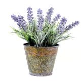 Pastoral Style Artificial Flowers Plastic Lavender In Metal Bonsai 2 Colors