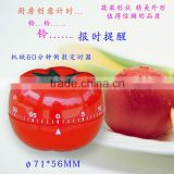 Hight quality fruit shape kitchen timer,mechanical countdown timer