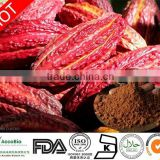 Chinese factory supply high quality cocoa extract